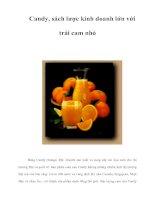 Tài liệu Candy, sách lược kinh doanh lớn với trái cam nhỏ pptx