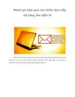 Tài liệu Đánh giá hiệu quả của chiến dịch tiếp thị bằng thư điện tử doc