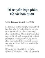 Tài liệu Di truyền học phân tử các bào quan ppt