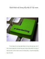 Tài liệu Định hình nội dung tiếp thị số Việt nam pdf