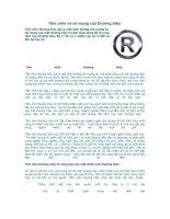 Tài liệu Tầm nhìn và sứ mạng của thương hiệu pptx