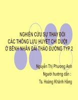 Tài liệu NGHIÊN CỨU SỰ THAY ĐỔI CÁC THÔNG LƯU HUYẾT CHI DƯỚI Ở BÊNH NHÂN ĐAI THAO ĐƯỜNG TYP 2 ppt