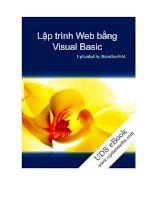 Tài liệu Lập trình Web bằng visual.basic ppt