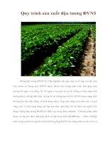 Tài liệu Quy trình sản xuất đậu tương ĐVN5 pptx