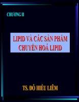 Tài liệu CHƯƠNG II: LIPID VÀ CÁC SẢN PHẨM CHUYỂN HOÁ LIPID pdf