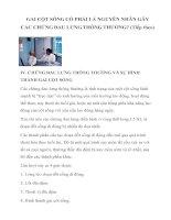 Tài liệu GAI CỘT SỐNG CÓ PHẢI LÀ NGUYÊN NHÂN GÂY CÁC CHỨNG ĐAU LƯNG THÔNG THƯỜNG? (Tiếp theo) docx