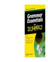 Tài liệu Grammar Essentials For Dummies - Ngữ pháp cơ bản cho người mới học ppt