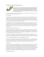 Tài liệu 10 điều cần biết trước khi thành lập công ty pptx