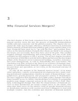 Tài liệu MERGERS AND ACQUISITIONS IN BANKING AND FINANCE PART 2 pdf