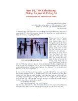 Tài liệu Nam Bộ, Thời Khẩn Hoang: Phảng, Cù Nèo Và Ruộng Cỏ pdf