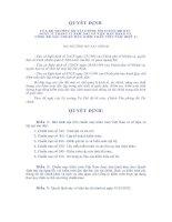 Tài liệu Quyết định số 143/2001/QĐ-BTC về ban hành và công bố 6 chuẩn mực kiểm toán Việt Nam (đợt 3) docx