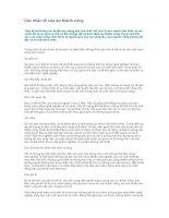 Tài liệu Các nhân tố của sự thành công doc