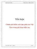 Tiểu luận Chính sách kiểm soát lạm phát của Việt Nam trong giai đoạn hiện nay