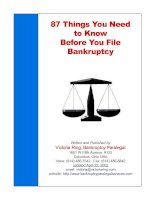 Tài liệu 87 Things You Need to know Before You File Before You File Bankruptcy pptx