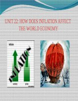 từ vựng tiếng anh chuyên ngành UNIT 22 HOW DOES INFLATION AFFECT THE WORLD ECONOMY