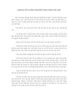 Tài liệu LÀM SAO ĐỂ AI CŨNG NHẬN BIẾT ĐƯỢC HÀNG VIỆT NAM pptx