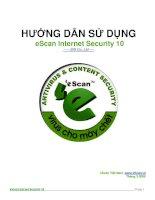 Tài liệu HƯỚNG DẪN SỬ DỤNG ESACAN INTERNET SECURITY INTERNET 10 pdf