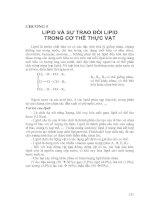 Tài liệu CHƯƠNG 5: LIPID VÀ SỰ TRAO ĐỔI LIPID TRONG CƠ THỂ THỰC VẬT ppt