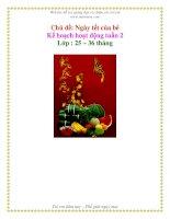 Tài liệu Kế họach họat động tuần 2 - Ngày tết của bé - Khối nhà trẻ pdf