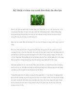 Tài liệu Kỹ thuật ủ chua rau xanh làm thức ăn cho lợn doc
