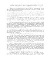Tài liệu 5 ĐIỀU THEN CHỐT TRONG SỰ PHÁT TRIỂN CỦA TRẺ pdf
