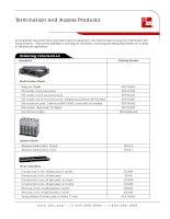 Tài liệu Termination and Access Products pdf