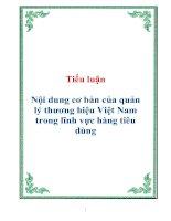 Tài liệu Tiểu luận Nội dung cơ bản của quản lý thương hiệu Việt Nam trong lĩnh vực hàng tiêu dùng pdf