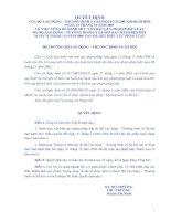 Tài liệu QUYẾT ĐỊNH CỦA BỘ LAO ĐỘNG - THƯƠNG BINH VÀ XÃ HỘI doc