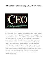Tài liệu Phác thảo chân dung CEO Việt Nam docx
