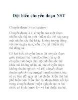 Tài liệu Đột biến chuyển đoạn NST docx