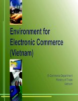 Tài liệu Environment for Electronic Commerce in Viet Nam pptx