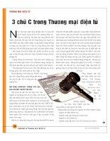 Tài liệu 3 chữ C trong thương mại điện tử docx