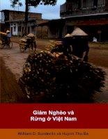 Tài liệu Giảm nghèo và rừng ở Việt Nam docx