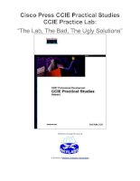 "Tài liệu Cisco Press CCIE Practical Studies CCIE Practice Lab: ""The lab, the bad, the ugly Solutions"" ppt"