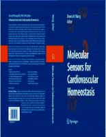 Tài liệu Molecular Sensors for Cardiovascular Homeostasis P1 ppt