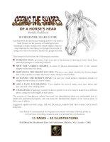 Tài liệu Seeing Shapes of a Horse''''s Head - Vẽ hình dạng của đầu ngựa docx