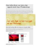 Các kiến thức cơ bản cho người mới học photoshop