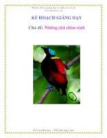 Tài liệu Kế họach giảng dạy - Những chú chim xinh pptx