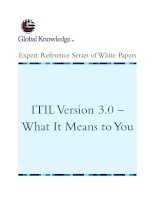 Tài liệu ITIL Version 3.0 – What It Means to You docx