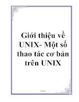 Tài liệu Giới thiệu về UNIX- Một số thao tác cơ bản trên UNIX pptx
