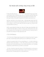 Tài liệu Kỹ thuật nuôi cá lăng vàng trong ao đất pptx