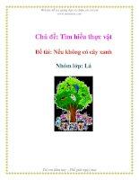 Tài liệu Chủ đề: Tìm hiểu thực vật - Đề tài: Nếu không có cây xanh Nhóm - Lớp: Lá docx