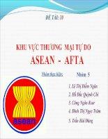 Tài liệu KHU VỰC THƯƠNG MẠI TỰ DO ASEAN - AFTA pdf