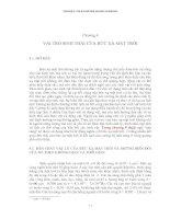 Tài liệu Chương 4: Vai trò sinh thái của bức xạ mặt trời pdf
