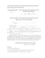 Tài liệu ẪU ĐƠN ĐỀ NGHỊ CẤP GIẤY PHÉP KINH DOANH BÁN BUÔN (HOẶC ĐẠI LÝ BÁN BUÔN) RƯỢU pptx