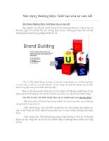 Tài liệu Xây dựng thương hiệu: Giới hạn của sự cam kết pdf