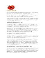 Tài liệu Những nét vẽ đầu tiên pdf