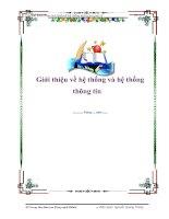 Tài liệu Giới thiệu về hệ thống và hệ thống thông tin ppt