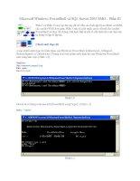 Tài liệu Microsoft Windows PowerShell và SQL Server 2005 SMO - Phần III pdf