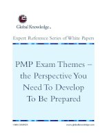 Tài liệu PMP Exam Themes – the Perspective You Need To Develop To Be Prepared ppt